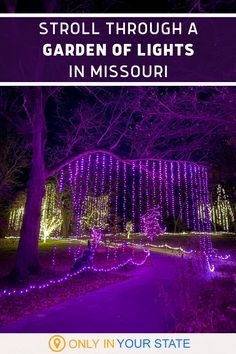 This holiday season, have some family-friendly winter fun in Missouri! Kids and adults alike will love this beautiful botanical garden filled with Christmas lights. Christmas Light Displays, Holiday Lights, Christmas Lights, Warm Springs Ranch, Powell Gardens, Garden Of Lights, Virtual Travel, Editing Background, Festival Lights