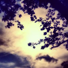 Evening.Hope - I loved cathing a sun moment like this!   #Droidography #MobilePhotography