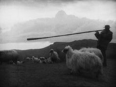 "FRANK PLICKA | Jaro na Podkarpatské Rusi"" (1929)"