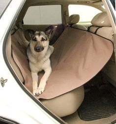K&H Vehicle Hammock Seat Cover for Traveling With Your Dirty Dog - Quick & Easy Way to Keep Your Rear Seat Area Clean - Storage Pocket - Works in Most Vehicles - Tan or Gray Color Optiions - Cross Peak Products Dog Seat Covers, Dog Car Seats, Car Upholstery, Dog Store, Dog Carrier, Cat Supplies, Dog Accessories, Your Pet, Puppies
