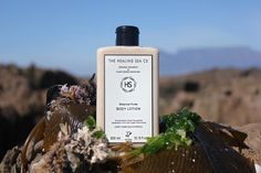 Botanical Puree Body Lotion - Natural and Organic Skincare & Baby Care Geranium Oil, Geranium Essential Oil, Organic Face Cream, Organic Skin Care, Natural Body Wash, Natural Skin Care, Cocoa Butter, Shea Butter, Sweet Almond Oil