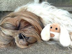 Sweet dreams! :))))