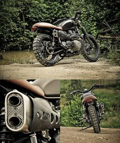 Triumph Bonneville Scrambler. I definitely want that aftermarket exhaust.
