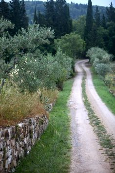 Podere Patrignone in Tuscany, Italy.  An olive farm and agriturissmo.  We had a blast here!