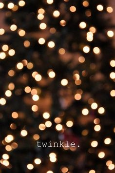 Fairy big city lights on pinterest fairy lights for White twinkle christmas lights