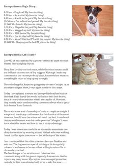 Excerpts From a Cat and Dog's Diary from Breaking Cat News
