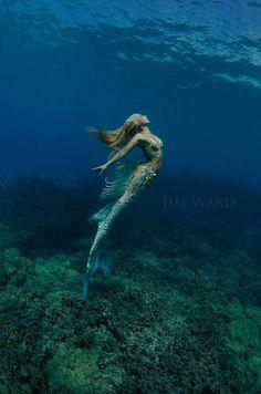 "sailorgil: """" Hannah Mermaid "" … Photographer: Jim Ward """
