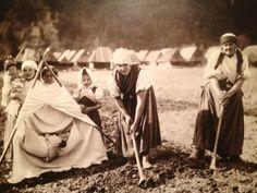 "Pavel Sochan Black & White Photograph Slovakia ""In The Field, Gombáš"" Heart Of Europe, Ancestry, Folk Art, Westerns, Ebay, Black And White, History, Retro, Couple Photos"