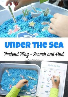 Under the Sea Pretend Play plus Search and Find Great for sensory, imaginative and Under the Sea Pretend Play has the added bonus of Search and Find to learn about things under the sea! Great for older toddlers and preschoolers as part of a theme. Sea Activities, Animal Activities, Summer Activities, Learning Activities, Preschool Activities, Water Theme Preschool, Under The Sea Crafts, Under The Sea Theme, Under The Sea Party