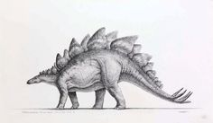 Mark Crash Mccreery did a beautiful series of pencil drawings as concept art for the Jurassic Park movies.