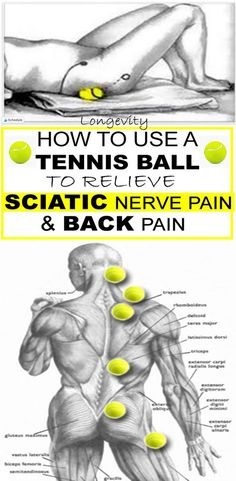 HOW TO USE A TENNIS BALL TO RELIEVE SCIATIC NERVE PAIN AND BACK PAIN Fitness Hacks, Fitness Workouts, Health Fitness, Sciatic Pain, Sciatic Nerve Relief, Back Pain Exercises, Stretches, Yoga Posen, Nerve Pain