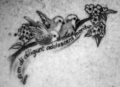 There is a story about the 3 Little Birds ( I know that this picture is of 4 little birds . Mommy Tattoos, Sister Tattoos, Three Birds Tattoo, Little Bird Tattoos, Bird Tattoo Meaning, Three Little Birds, Memorial Tattoos, Lion Tattoo, Body Mods
