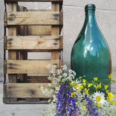 Puutarha, luonnonkukat, asetelmat