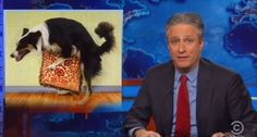 Jon Stewart hammers Republicans on Iran letter: They're 'f*cking cuckoo bananas'