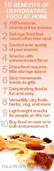 Why Get a Food Dehydrator