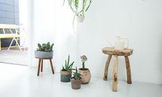 mes caprices belges: decoración , interiorismo y restauración de muebles: LA MADERA Y LAS PLANTAS, COMO BASE EL BLANCO/ WOOD AND PLANTS, THE BASE IN WHITE