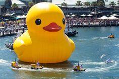 Florentijn Hofman - world's largest rubber duck
