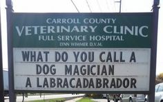 These Hilariously Clever Veterinarian Signs Will Have You In Stitches!