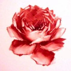 Rose Lesson 2 - Shaping a Rose - Marci   Great Tutorial