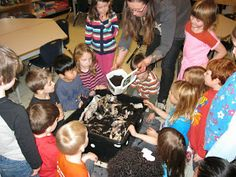 A Kindergarten Adventure in Project Based Learning: Scaffolding the investigation Student Centered Learning, Inquiry Based Learning, Project Based Learning, Pond Life, Kindergarten Fun, Early Childhood Education, Life Cycles, Investigations, Lesson Plans