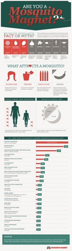 I want to kill all mosquitos. [infographic] What attracts them. illuminating-information