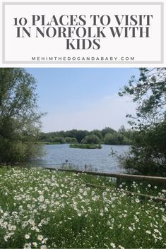Are you looking for something to do at weekends and during school holidays in Norfolk? Here are 10 places to visit in Norfolk with kids. Cheap Days Out, Days Out With Kids, Norfolk Broads, Norfolk Coast, Family Weekend, Family Days Out, Days Out In Scotland, Days Out In England, Plan A Day Out