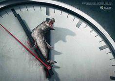 Toutes les 60 secondes, une espèce meurt / Bunds
