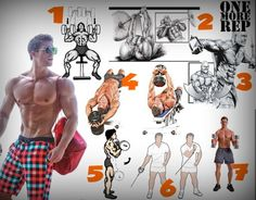 Every possible workout for every single muscle in a man's or woman's body. Tons of illustrations!
