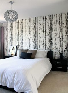 Modern Birtch Trees Eh61008 Forest Wallpaper Bedroom Black And