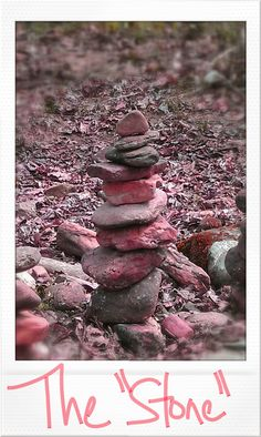 """The """"StOnE""""  Devotional at www.bloomingbygrace.blogspot.com Blooming by GrAcE: The """"StOnE"""""""