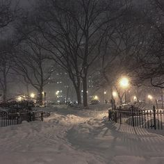 Cosy Winter, Winter Night, Winter Snow, Winter Time, Winter Christmas, Summer Couples, Snow Flower, Winter Road, Snowy Day