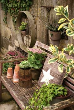 Oh my!  I would love to see more of this garden.  The use of the old rickety bench as a potting table is very creative.  It fits into the restore, reuse, and re-love mantra of the modern, environmentally conscious movement.
