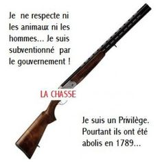 fusil-anti-chasse-.jpg