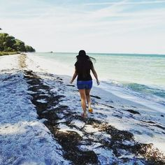 Pretty and perfect Florida. Anna Maria Island, Take My, Latina, Walking, Florida, Polaroid Film, Sea, Landscape, Pretty