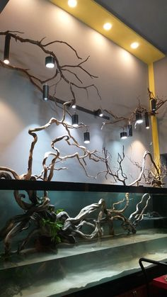 Fish Aquarium Decorations, Aquarium Setup, Home Aquarium, Aquarium Design, Betta Fish Tank, Aquarium Fish Tank, Planted Aquarium, Fish Tank Design, Aquarium Landscape