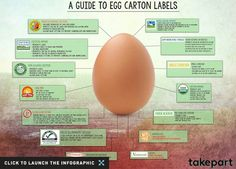 Guide to Egg Carton Labels
