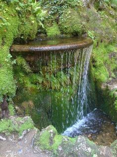 """Small wall water feature """"demilune"""" basin waterfall surrounded by mossy rocks in the grotto at Gardens of Powerscourt (a short drive from Dublin, Ireland)  --  moving water energizes, while the moss & ferns add softness"""