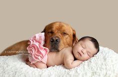 24 pasgeboren baby's die hun eerst photoshoot delen met de hond!