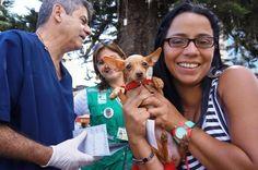 Gratis vacune a su mascota contra la rabia
