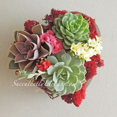 """Succulent arrangement in a 6"""" heart shape glass bowl. Arrangement includes succulents , blossfeldiana flowers and colored moss."""