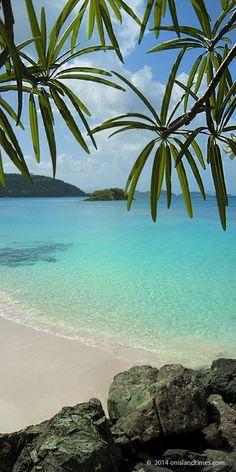 St John's longest beach, Cinnamon Bay Beach, US Virgin Islands. Enjoy camping?…