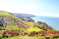 Valley of the Rocks in the Spring Sunshine. Photo by John McGowan of The Denes Guesthouse, Lynton. #Exmoor #Travel #NorthDevon