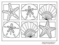 Free printable summer coloring pages: 6 seashells