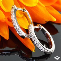 """Huggable Diamond Earrings, Dainty and dazzling, these """"Huggable"""" Diamond Earrings are perfect for everyday wear. Set with 24 brilliant A CUT ABOVE® Hearts and Arrows Diamond Melee"""