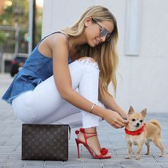 #fashion #pet #dog #accessories #red #instagood