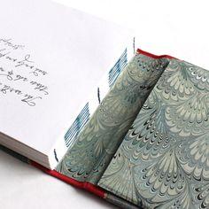 Matt's Travel Journal by Ruth Bleakley