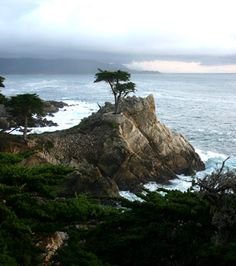 Carmel, CA ~ Sharing beautiful pictures of Monterey County, CA courtesy of Pinterest. If you would like to live in Monterey County please visit www.MCAR.com to find a REALTOR® who can help you with all your Real Estate needs.