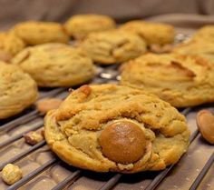 Endulge in these delectably delicious peanut butter cookies. Yummy Cookies, Cake Cookies, Cookie Swap, Cookie Crumbs, Cookie Exchange, Baking Recipes, David Venable, Peanut Butter, Sweet Tooth