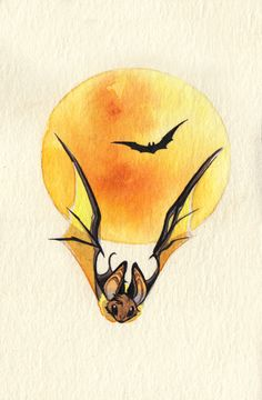 Inktober day 24: Bats!!