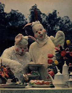 Bad Rabbit, Bad Rabbit buffet...